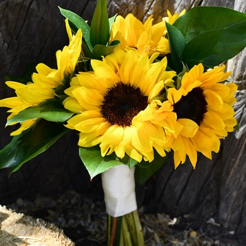 bridesmaid bouquet with sunflowers