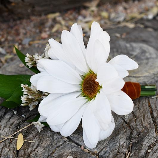 white daisy boutonniere